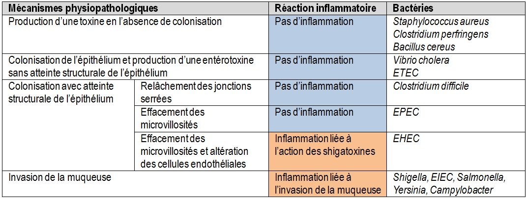 infections intestinales