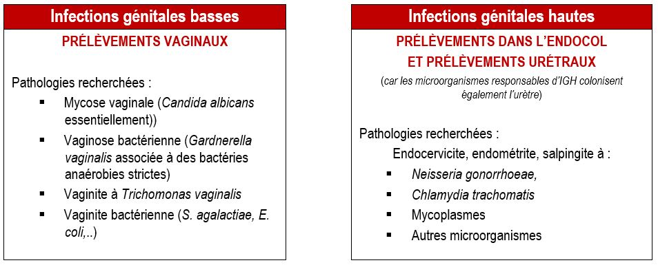 diagnostic infections génitales femme