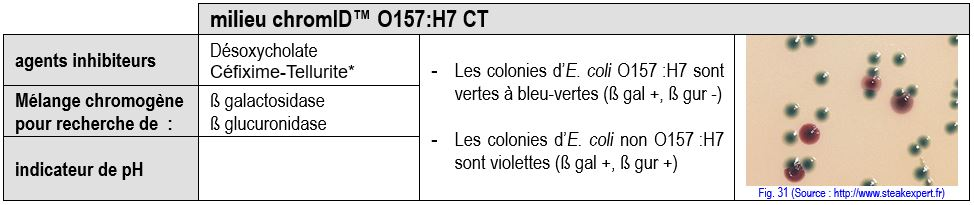 coproculture O157H7 EHEC