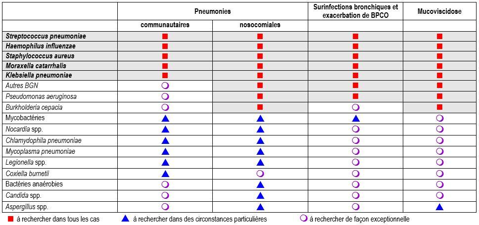 pneumoniae